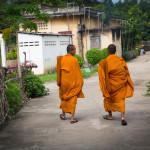 Monk life-3