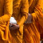 Monk life-4a