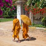 Monk life-5